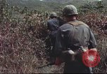 Image of sentry dogs South Vietnam, 1967, second 50 stock footage video 65675062007