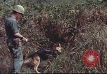 Image of sentry dogs South Vietnam, 1967, second 52 stock footage video 65675062007