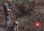 Image of sentry dogs South Vietnam, 1967, second 54 stock footage video 65675062007
