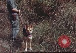 Image of sentry dogs South Vietnam, 1967, second 55 stock footage video 65675062007