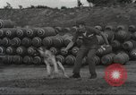 Image of sentry dogs Vietnam, 1965, second 15 stock footage video 65675062013