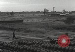 Image of sentry dogs Vietnam, 1965, second 21 stock footage video 65675062013
