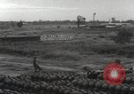 Image of sentry dogs Vietnam, 1965, second 22 stock footage video 65675062013