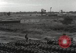 Image of sentry dogs Vietnam, 1965, second 24 stock footage video 65675062013