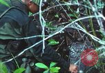 Image of United States soldiers South Vietnam, 1967, second 39 stock footage video 65675062021