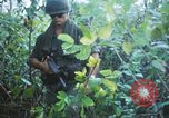 Image of United States soldiers of 4th Infantry Division South Vietnam, 1967, second 58 stock footage video 65675062025