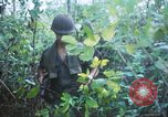 Image of United States soldiers of 4th Infantry Division South Vietnam, 1967, second 61 stock footage video 65675062025