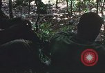 Image of United States soldiers South Vietnam, 1967, second 21 stock footage video 65675062026