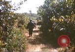Image of 1st Infantry Division Lai Khe South Vietnam, 1968, second 22 stock footage video 65675062035