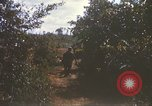 Image of 1st Infantry Division Lai Khe South Vietnam, 1968, second 25 stock footage video 65675062035