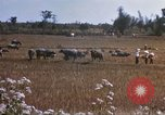 Image of 1st Infantry Division Lai Khe South Vietnam, 1968, second 38 stock footage video 65675062035