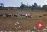 Image of 1st Infantry Division Lai Khe South Vietnam, 1968, second 40 stock footage video 65675062035