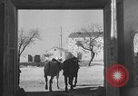 Image of Spanish villagers engaged in normal pursuits Spain, 1937, second 51 stock footage video 65675062078