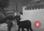 Image of Spanish villagers engaged in normal pursuits Spain, 1937, second 61 stock footage video 65675062078