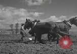 Image of Farmers plowing fields with wooden plows and horses Spain, 1937, second 26 stock footage video 65675062079