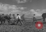 Image of Farmers plowing fields with wooden plows and horses Spain, 1937, second 29 stock footage video 65675062079