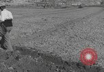 Image of Farmers plowing fields with wooden plows and horses Spain, 1937, second 43 stock footage video 65675062079