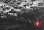 Image of Spanish civil war Spain, 1937, second 21 stock footage video 65675062080