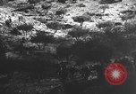 Image of Spanish civil war Spain, 1937, second 25 stock footage video 65675062080