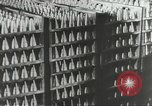 Image of German people Germany, 1944, second 39 stock footage video 65675062177