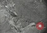 Image of war damage Russian Front, 1944, second 28 stock footage video 65675062180