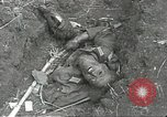 Image of war damage Russian Front, 1944, second 46 stock footage video 65675062180