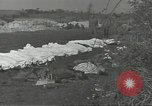 Image of burial of dead bodies Nettuno Italy, 1944, second 1 stock footage video 65675062183