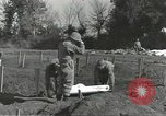 Image of burial of dead bodies Nettuno Italy, 1944, second 53 stock footage video 65675062183