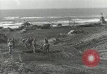 Image of United States Engineers Regiment Nettuno Italy, 1944, second 25 stock footage video 65675062184