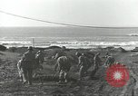 Image of United States Engineers Regiment Nettuno Italy, 1944, second 39 stock footage video 65675062184