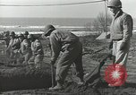 Image of United States Engineers Regiment Nettuno Italy, 1944, second 50 stock footage video 65675062184