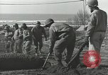 Image of United States Engineers Regiment Nettuno Italy, 1944, second 51 stock footage video 65675062184