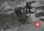 Image of United States Army Air Forces Guam Mariana Islands, 1944, second 44 stock footage video 65675062243