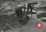 Image of United States Army Air Forces Guam Mariana Islands, 1944, second 45 stock footage video 65675062243