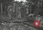 Image of United States Army Air Forces Guam Mariana Islands, 1944, second 22 stock footage video 65675062249