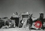 Image of Soviet farmers cutting and threshing stalks of grain during World War 2 Soviet Union, 1941, second 13 stock footage video 65675062264