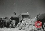 Image of Soviet farmers cutting and threshing stalks of grain during World War 2 Soviet Union, 1941, second 15 stock footage video 65675062264