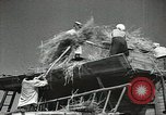 Image of Soviet farmers cutting and threshing stalks of grain during World War 2 Soviet Union, 1941, second 22 stock footage video 65675062264