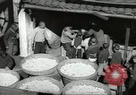 Image of Chinese refugees Kiukiang China, 1938, second 10 stock footage video 65675062266