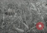 Image of Japanese soldiers Kiukiang China, 1938, second 18 stock footage video 65675062268
