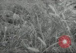 Image of Japanese soldiers Kiukiang China, 1938, second 19 stock footage video 65675062268