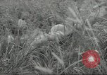 Image of Japanese soldiers Kiukiang China, 1938, second 21 stock footage video 65675062268