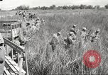 Image of prisoners of war Philippines, 1945, second 29 stock footage video 65675062293