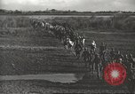 Image of 6th Ranger Battalion Luzon Philippines, 1945, second 16 stock footage video 65675062317