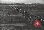 Image of 6th Ranger Battalion Luzon Philippines, 1945, second 22 stock footage video 65675062317