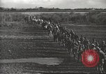 Image of 6th Ranger Battalion Luzon Philippines, 1945, second 23 stock footage video 65675062317