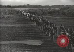 Image of 6th Ranger Battalion Luzon Philippines, 1945, second 24 stock footage video 65675062317