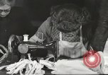 Image of French Red Cross workers Thionville France, 1945, second 30 stock footage video 65675062327
