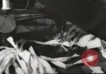 Image of French Red Cross workers Thionville France, 1945, second 42 stock footage video 65675062327
