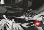 Image of French Red Cross workers Thionville France, 1945, second 43 stock footage video 65675062327